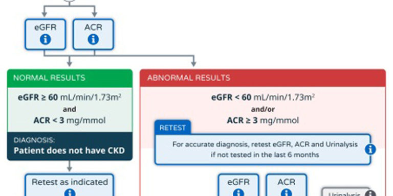 Good news for physicians: Online CKD pathway now available             – 6th November 2014