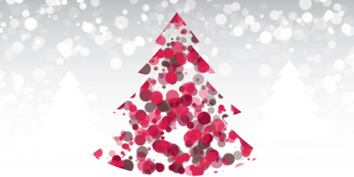 Happy Holidays from RPAP!             – 24th December 2015